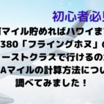 マイル初心者必見!何マイル貯めればハワイまでA380「フライングホヌ」のファーストクラスで行けるのか?ANAマイルの計算方法について調べてみました